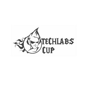 ���������� � ��� �������������� Techlabs Cup ��������� � ����� ����� ��������