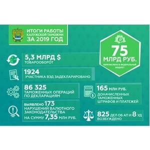 Результаты деятельности таможенной службы региона за 2019 год