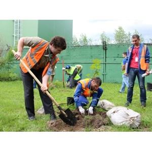 """Всемирный день охраны окружающй среды сотрудники компании """"Балтика"""" отметили """"зеленой"""" акцией"""