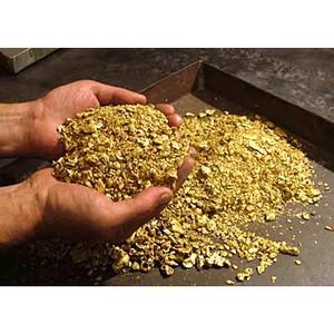 Падение рубля оказалось выгодным для золотодобытчиков