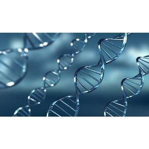 Лекция «Загадки генетики»