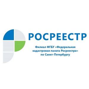 Кадастровая палата по Санкт-Петербургу подвела итоги горячей линии