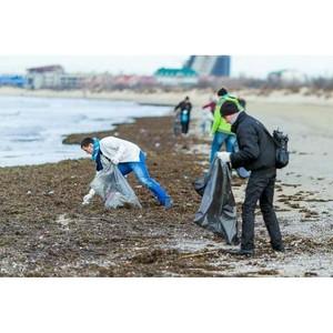 Ростове-на-Дону пройдет круглый стол на тему раздельного сбора мусора