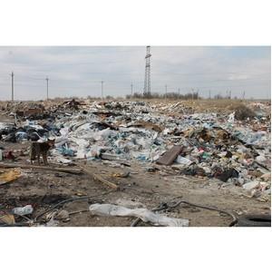 Волгоградские активисты ОНФ выявили несанкционированную свалку на территории Городищенского района