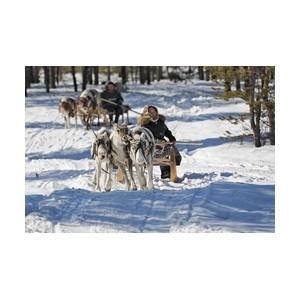 «РуссНефть» выполнила программу компенсационных выплат коренным малочисленным народам Севера
