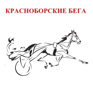 Приглашаем на Красноборские рысистые бега 4 января 2014 года