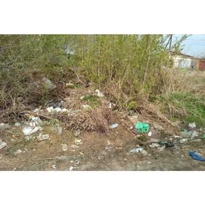 Активисты ОНФ в Курганской области продолжают работу по проекту «Генеральная уборка»