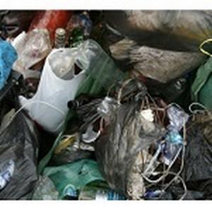 —отрудники Ѕур¤тского отделени¤ Ѕайкальского банка —бербанка –оссии стали участниками экологической акции