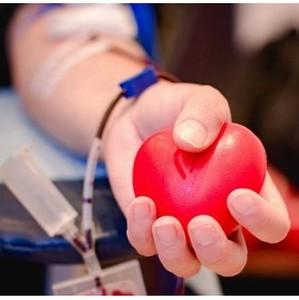 В апреле проводятся праздничные акции донорского марафона практик «Достучаться до сердец»