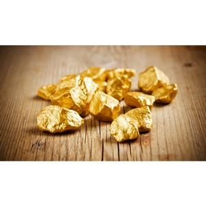 Израильские ученые «вырастили» подобие золота в лаборатории.