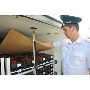 Смоленские таможенники наращивают борьбу с преступлениями в таможенной сфере
