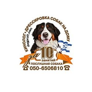 Отзывы о дрессировке собак Dogproff, Израиль, Хайфа