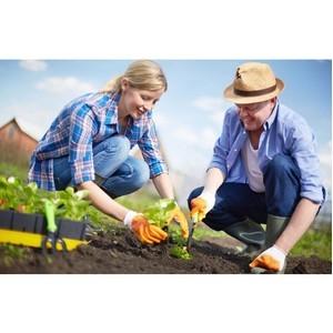 Кадастровая палата отвечает на вопросы садоводов и огородников
