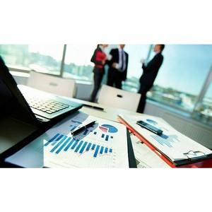 На рынке множество аудиторских компаний, которые таковыми по сути не являются и обесценивают рынок.