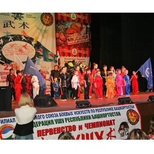 В Уфе состоялся фестиваль восточных единоборств.