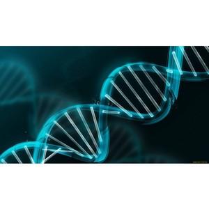 Более 80% редких заболеваний имеют генетическую природу