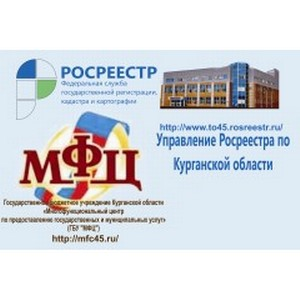 О введении дополнительных мер по обучению специалистов ГБУ Курганской области «МФЦ»