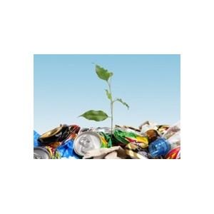Госдума РФ стоит на пути к созданию индустрии утилизации мусора в стране
