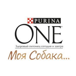 Purina One® Моя Собака… – для маленьких собак с неповторимым характером