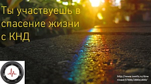 Первая Карта разбитых дорог будет создана в России
