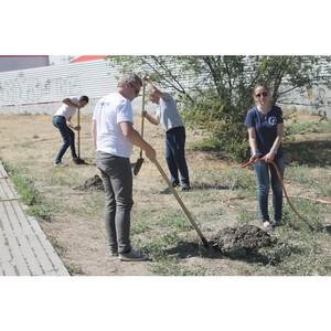 Активисты ОНФ провели субботники на территории двух районов Волгограда