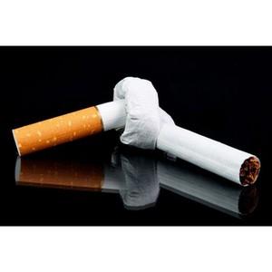 Профилактика табакокурения. Функционирование интерактивной площадки «Антитабачный закон в действии»