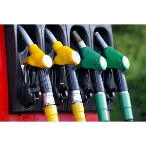 ОНФ запускает «горячую линию» для сообщений о фактах завышения цен на топливо