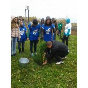 УМПО  и БРО СоюзМаш России провели акцию «Лес Победы»