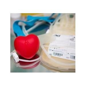 Состоялся VI Всероссийский съезд менеджеров по пропаганде Службы крови