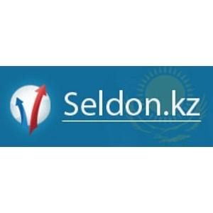 Регистрация казахстанского домена Seldon