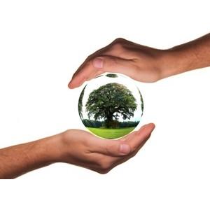 День Земли в Ломоносовской школе