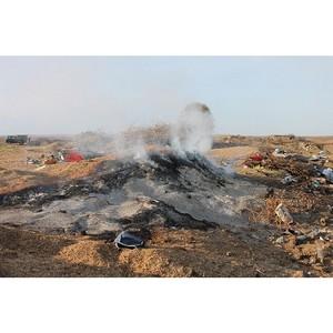 јктивисты ќЌ' вы¤вили стихийную свалку на территории природного заказника в јмурской области