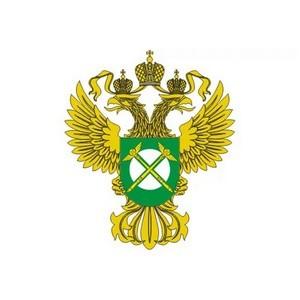 ФАС пресекла деятельность картеля поставщиков МВД России