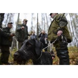 Активисты ОНФ на Алтае намерены проверить достоверность учета численности охотничьих животных