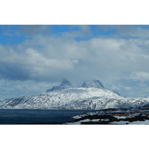 Ученые КФУ реализуют международный проект по сохранению биоразнообразия Арктики