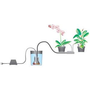 Адаптированные и интегрируемые системы автополива приходят в офисы и дома горожан