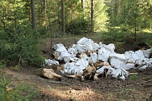 После сигнала ОНФ в Кировской области ликвидирована крупная свалка в лесу у Малой Субботихи