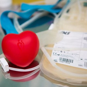 Донорство крови в регионах России: Ярославская область