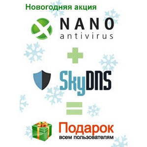Новогодний подарок от SkyDNS и NANO Антивирус