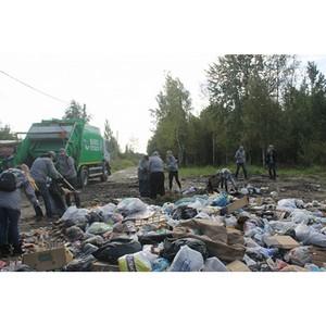 Активисты ОНФ в Санкт-Петербурге провели экологическую акцию «Генеральная уборка страны»