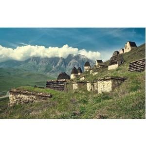 Локальные бренды Северной Осетии