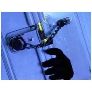 Полицейские Зеленограда задержали троих подозреваемых в квартирной краже
