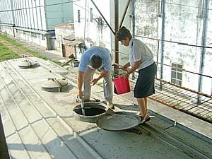 Карантин растений на Дону и Волге в 2015 году усилился
