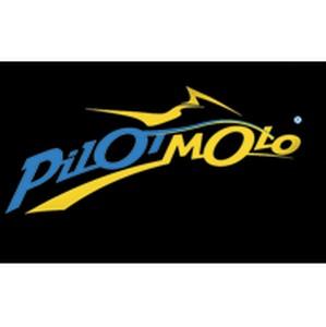 Международный мотофристайл FMX   PILOTMOTO - Высший пилотаж.