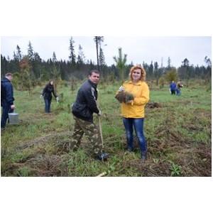 Полиция Зеленограда приняла участие во Всероссийском экологическом субботнике