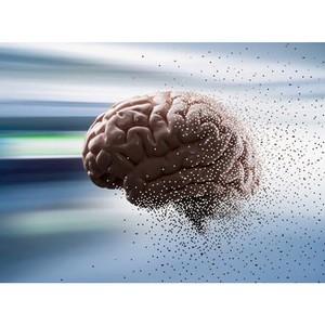 Открытая лекция Марии Фаликман «Современная когнитивная наука»