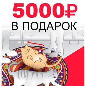 5000 рублей за репост или теплый пол бесплатно!