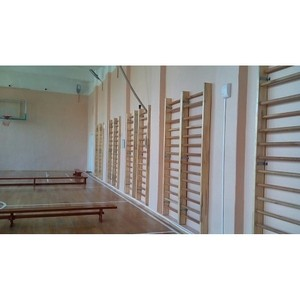 Активисты ОНФ в Амурской области проверили состояние спортзалов сельских школ