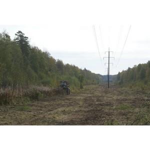 В первом полугодии 2013 года «Владимирэнерго» расчистил более тысячи гектаров трасс ЛЭП