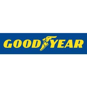 Новый мировой рекорд Goodyear и Райнера Зетлоу: автопробег по всей Евразии менее чем за 8 дней!
